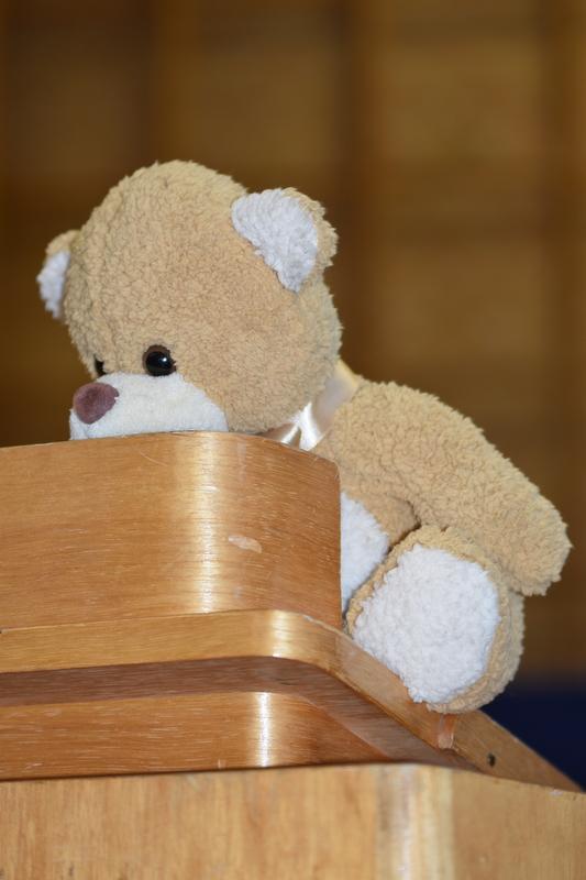 Teddybär auf Rednerpult
